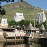 Voyage Inde Sud : Temples Tiruvannamali Tamil Nadu