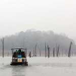 Travel India : Periyar Lake Kerala