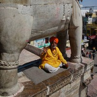 Travel in India : Man with Elephant