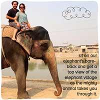Voyage Inde Rajasthan : Elefantastic
