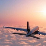Trip India : Flight