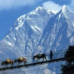 Trip North India : Sikkim Pelling