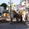 Avis Voyageur Nouvini : Voyage Inde Tamil Nadu
