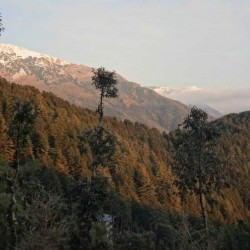 Travel India : View Kashmir & Ladakh