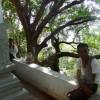 Travel South India : Tamil Nadu