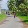 Travel South India : Kerala