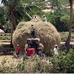 Voyage Inde Sud : Hampi Hospet Karnataka